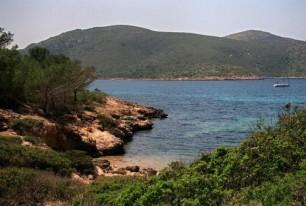 Nuevos-espacios-marítimos-protegidos-en-España-02-e1386337196646