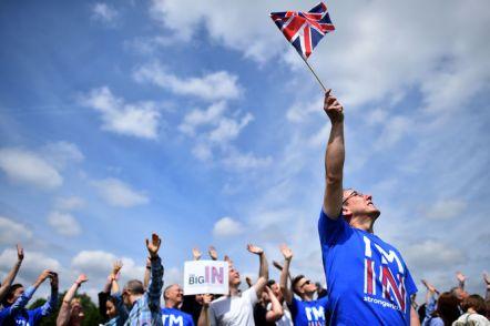 Partidarios-detractores-Brexit-centran-indecisos_928418668_108042792_667x445